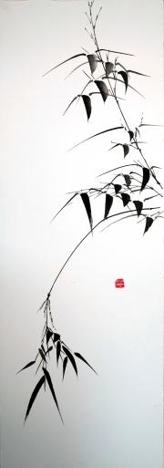 Branches de bambou retombantes