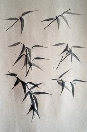 Entraînement sur les feuilles de bambou